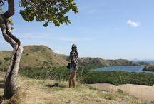 Rinca Island NTT