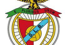 O glorioso Benfica / by Luís Felício