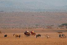 Ker & Downey Horseback Journeys / Luxury Horseback Travel | Luxury Riding Safaris | Ker Downey