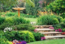 Διακοσμηση κηπου