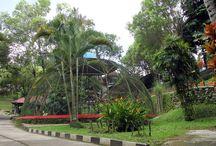 Taman Satwa / Bagian dari wahana edukasi Taman Kyai Langgeng Kota Magelang yang juga dikenal sebagai Taman Reptil