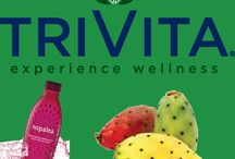 Wellness Drinks / Wellness Drinks That give you energy and protect you health by removing toxins from the body