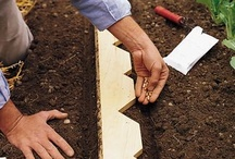 Home {Gardening} / Gardening ideas for succulents, terrariums, planters, fairy gardens and more!  For more ideas http://blog.thecelebrationshoppe.com