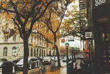 Brookyln, NYC