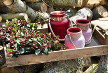Christmas 2013 / Tu znajdziecie nasze najnowsze aranżacje związane z Bożym Narodzeniem. W tym sezonie najmodniejsze są kolory: berry (wiśnia) i srebrno - szary.