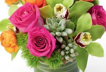 Allen's Flowers / Allen's Flowers has been a client of Flyline Search Marketing since April 2012. They were voted best florist in San Diego 6 years in a row!.