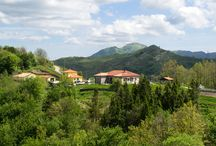 Colle del Faggio - Holiday Farm / This is our little Holiday Farm in the typical italian village of Varese Ligure.