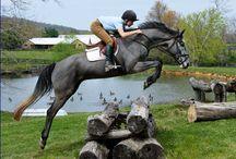 horse riding...