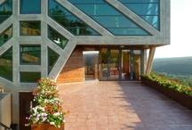 Large Home Tree - Ignatov Architects