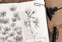 TRAVELER`S NOTEBOOK / A collection of stunning Traveler`s notebooks
