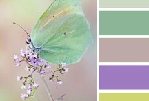 Färg palett mm