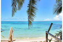 Fiji Paradise / Fiji, Reisen, Travel, Paradise, Paradies