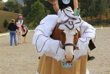 horse costumes / by Sandy Huot