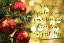 Holiday Pest Tips