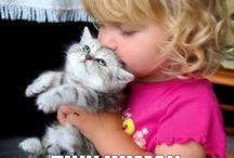 Cats and Kittens / by Loretta Kim
