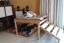 cama para mis perros