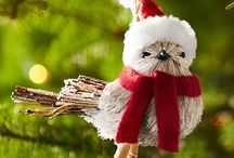 Deck the Tree! / Incorporate your favorite activity and the beauty of your feathered friends into your holiday decor.