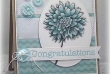Congratulations Cards / by Becky Helwig