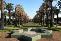 sweelinck_Casablanca / de mooiste parken en pleinen vind je in Casablanca
