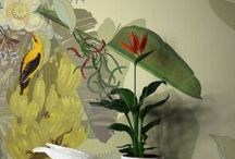 Wallpaper, murals, trompe loile, stencils....