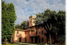 Pitti Wine - I vini / Vini prodotti nella Tenuta di Torre a Cenaia e nelle altre terre toscane proprietà della nobile famiglia fiorentina Pitti.