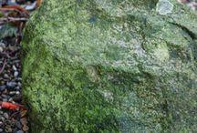 Ganz schön grün 02 | 15 / www.kirchhoff.net