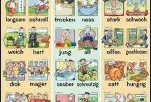 Jazyky (další)