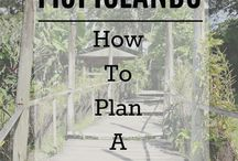 Travel / How to Plan Your Trip, things to do while you travel, travel hacks, tips, and tricks for travel.