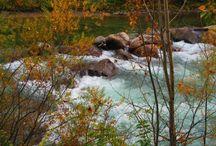 #AutunnoInTirolo / 5 giorni tra i colori dell'autunno di Merano e di Innsbruck http://mondovagandosenzameta.it/autunno-in-tirolo/