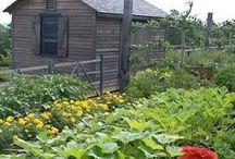 Gardening info / Tips