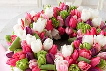 Blumen {Tulips}