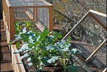 Protection au jardin