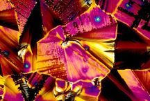 World through microscope