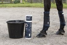 Protections chevaux