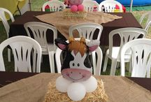 Farm Bday Party