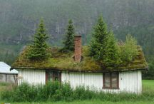 Green Roof - Norway