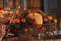 καροτσια γεμάτα με λουλουδια