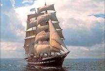 Velieri e Barche