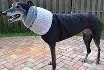 Greyhound Blizzard Parka Coat / Warm coats for Greyhounds