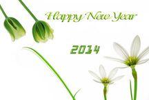 Funny happy new year photos