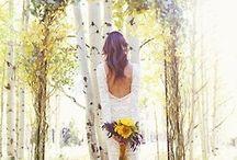Brooke's wedding / by Jordan Brandon