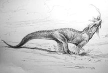 Paleontologia & Evolução / Fósseis.