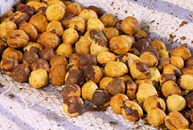 Roasting Hazelnuts & more / by Tina Faust