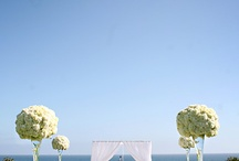 WEDDING IDEAS / by Nicole Giuliany