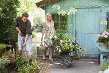 Queen Online Magazine ( NL ) / Queen Flowerbulbs is een eigen online magazine begonnen om iedereen te informeren en inspireren over alle gebeurtenissen in bloembollenwereld!