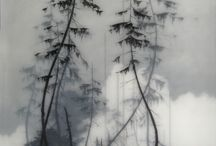 Shades of grey nature