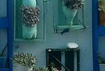 jardinagem:Meus mimos