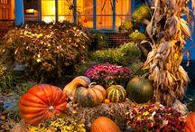 fall / by Robin Welker