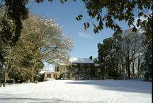 Winter Wonderland / Wintry scenes across Wales