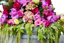 Bright Color Wedding Flowers